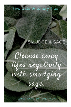 Cleanse away Negative Energy with Sage