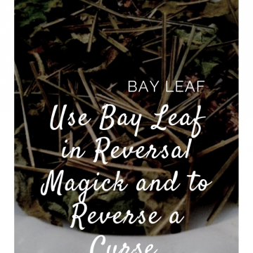 Bay Leaf for Reversal Magick