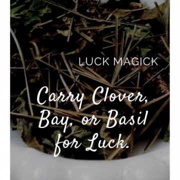 Clover for Luck / Kitchen Witchery  Magick
